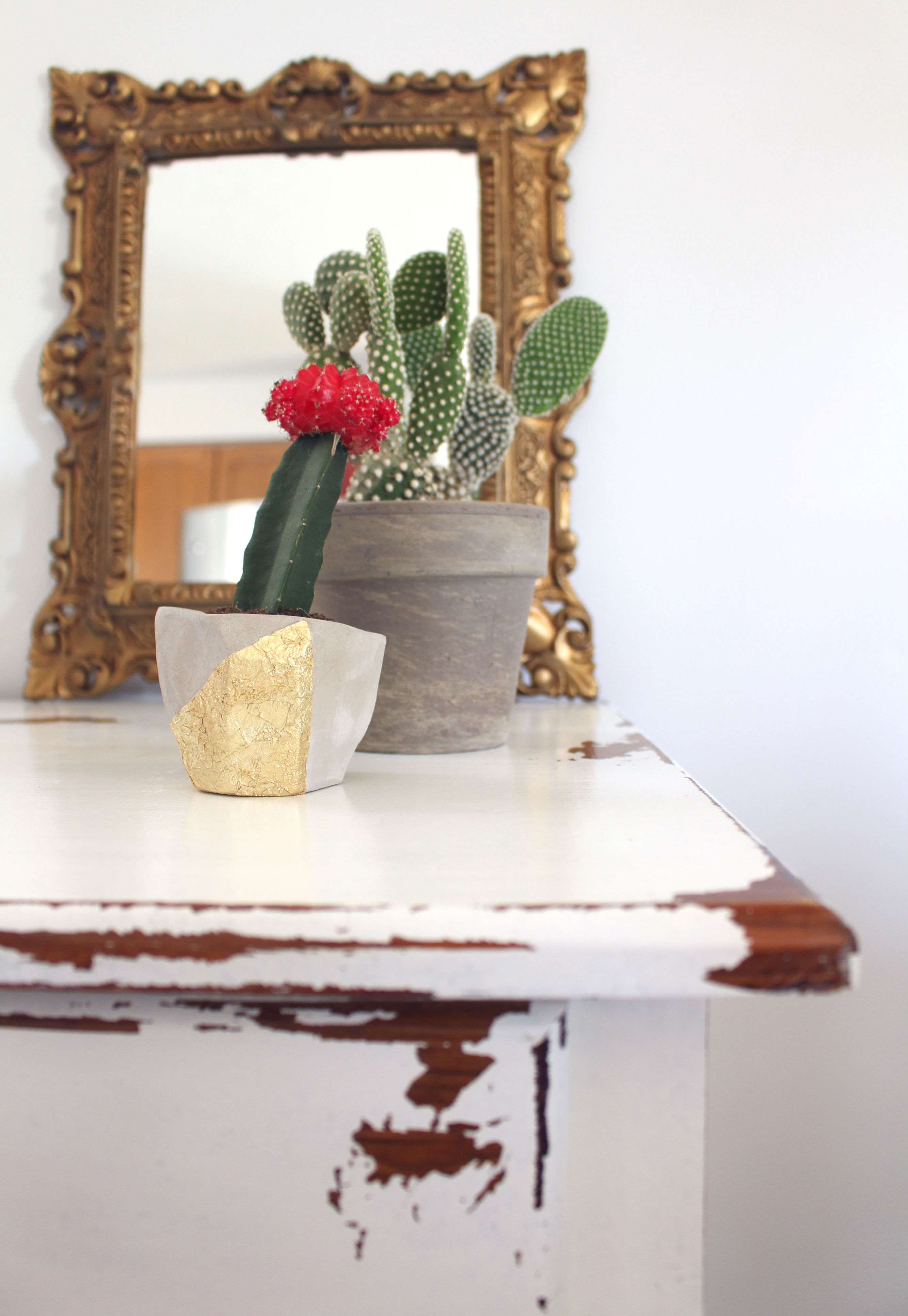 DIY Clay Planter