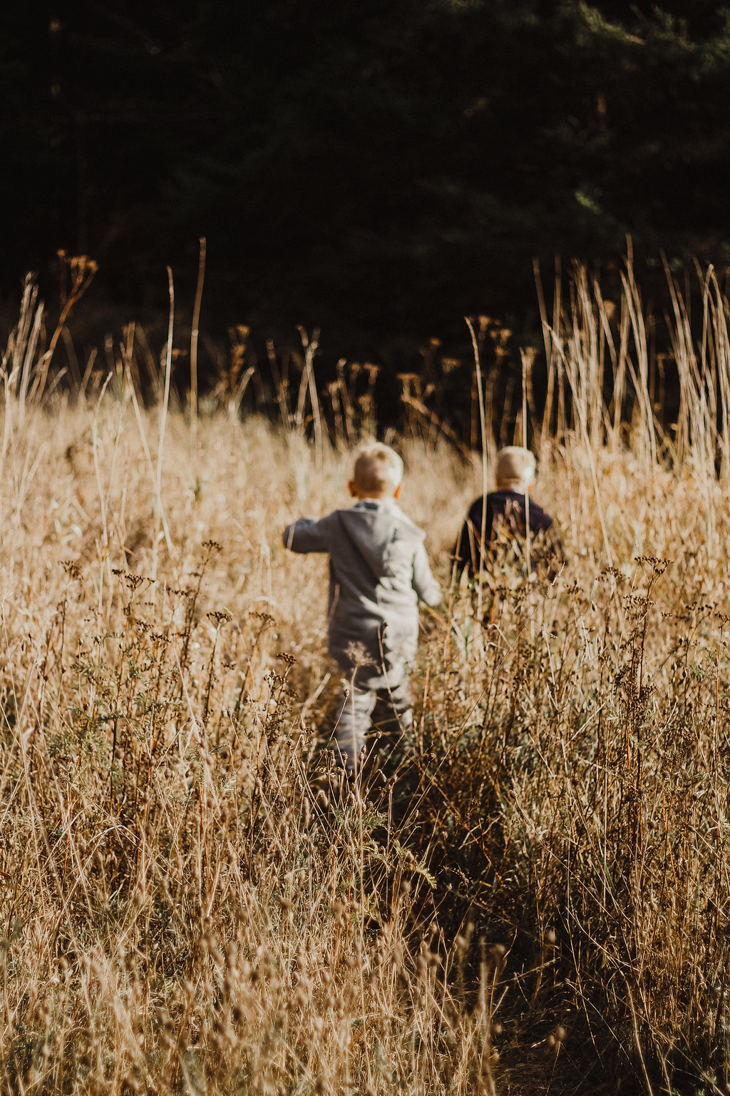 Autumn Came With Wind & Gold - Fall Family Photography